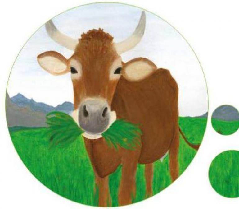 "New Educational Material ""COOL COWS"""